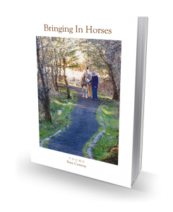 Bringing In Horses by Suzy Conway