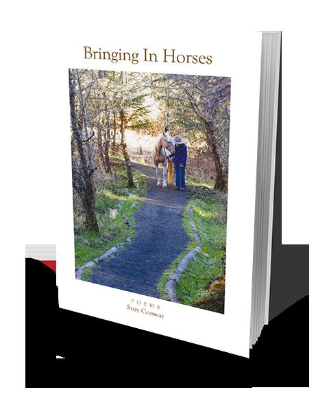 Bringing In Horses